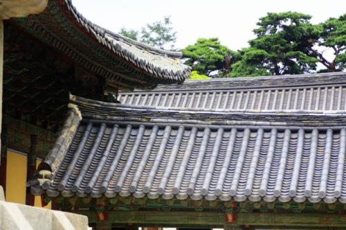 20110907-084306.jpg