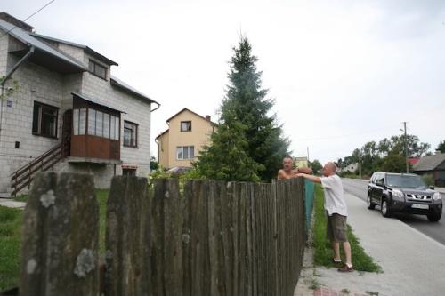 polskie  323